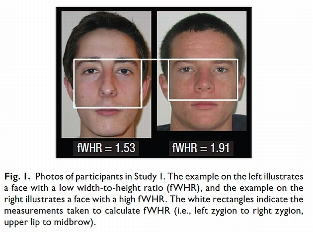 Ironically, a Man's Face Can Tell You If He's Likely to ...