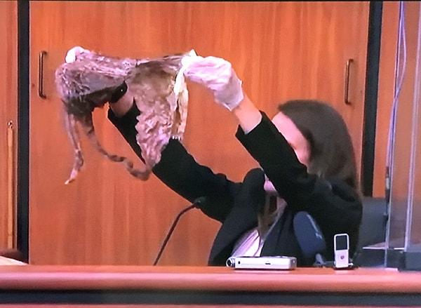 Josephson's bloody underwear is shown to the jury.